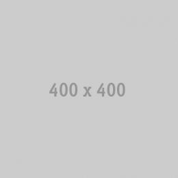 NAVIPILOT4000